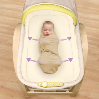 Nôi rung Summer Infant SM26070